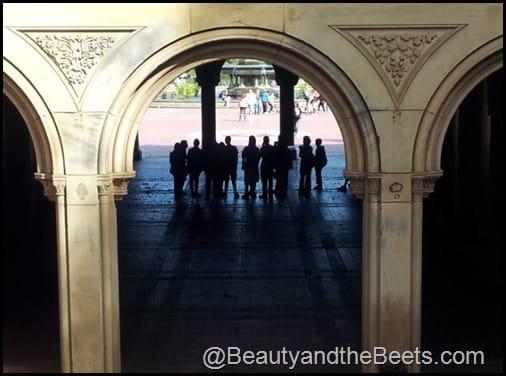 Bethesda Fountain Opera Crowd