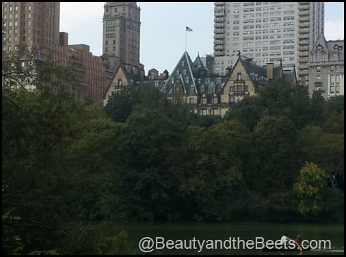The Dakota Central Park NYC