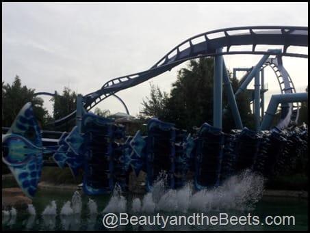 Manta Fying Roller Coaster