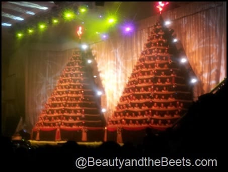 The Singing Christmas Trees