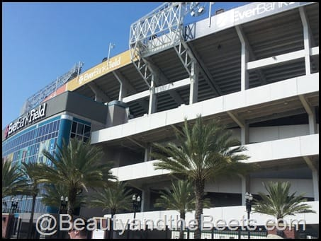 EverBank Field Gate River Run