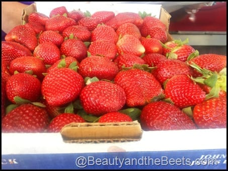 Florida Strawberry Festival Berries