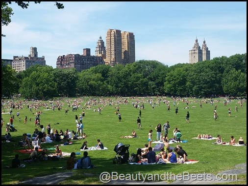 Central Park Beauty and the Beets