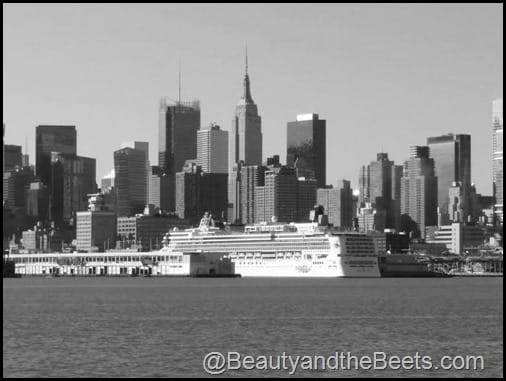 New York Crusie Ship Hudson River Beauty and the Beets