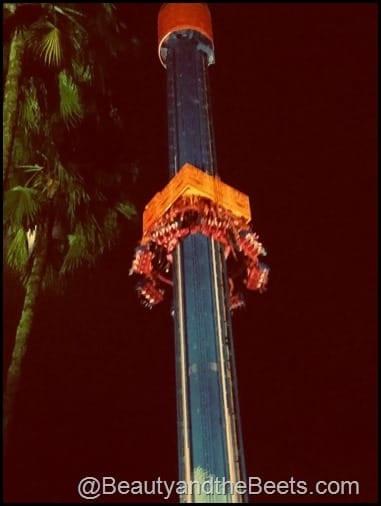 Busch Gardens Tampa Howl O Scream 1