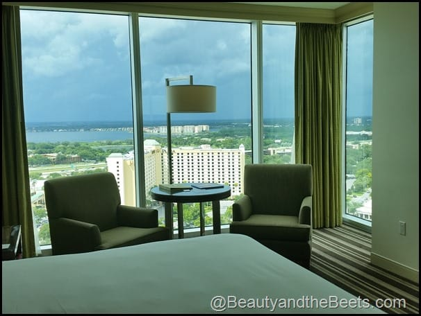 King View Room Hyatt Regency Beauty and the Beets
