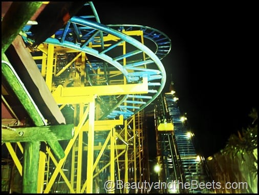 Sand Serpent Kids Coaster Busch Gardens 1