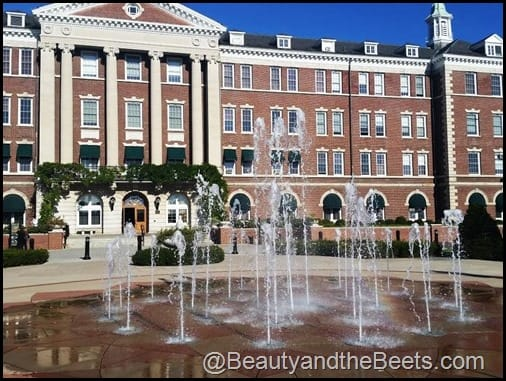 Culinary Institute of America Beauty and the Beets