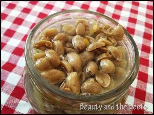 Pickled Peanuts