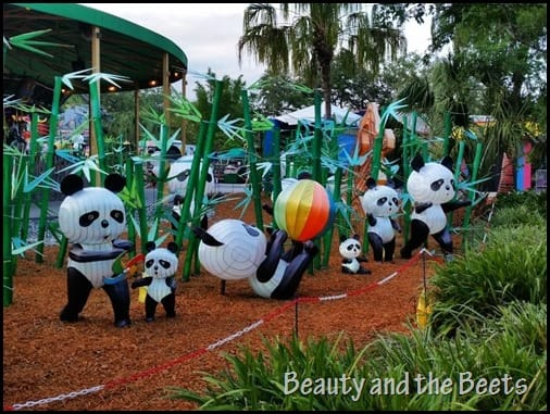 Pandas Zoominations Beauty and the Beets