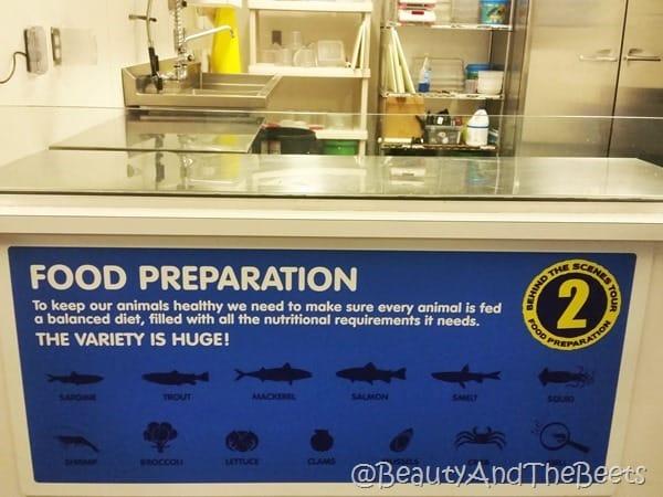 Sea Life Orlando food preparation Beauty and the Beets