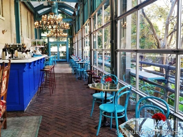 Ocho dining room San Antonio Beauty and the Beets