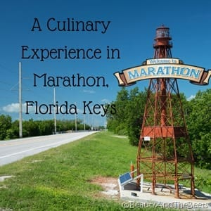A Culinary Experience in MARATHON Beauty and the Beets