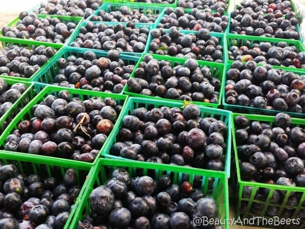 Pints of Blueberries Beauty and the Beets