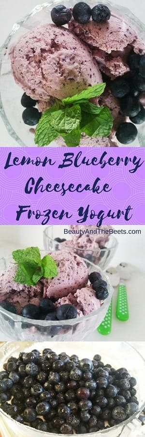 Lemon Blueberry Cheesecake Frozen Yogurt recipe Beauty and the Beets