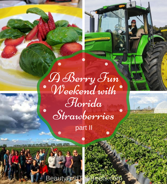Berry Fun Weekend with Florida Strawberries Beauty and the Beets II