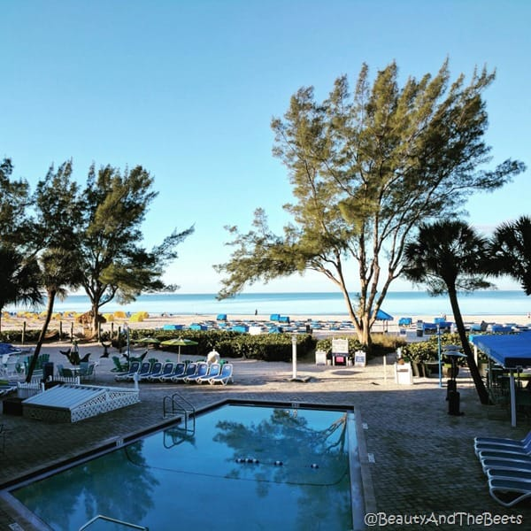 Guy Harvey Outpost beach and pool Beauty and the Beets