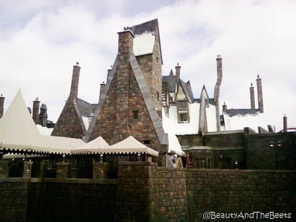 the snowy roofs and crooked chimneys of the stoone buildings in the Wizarding World of Harry Potter