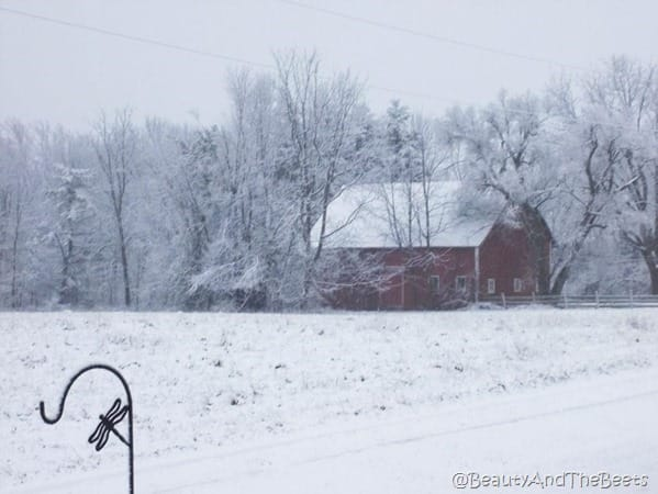 a red barn covered in snow in the middle of a snowy field and snowy trees