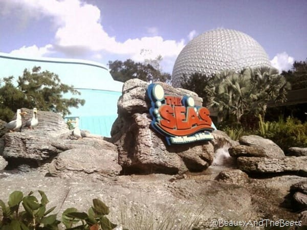 the sign The Seas on a rock in front of the Epcot Spaceship Earth ball