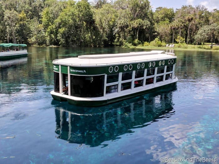 Silver Springs State Park Beauty and the Beets glass bottom boat
