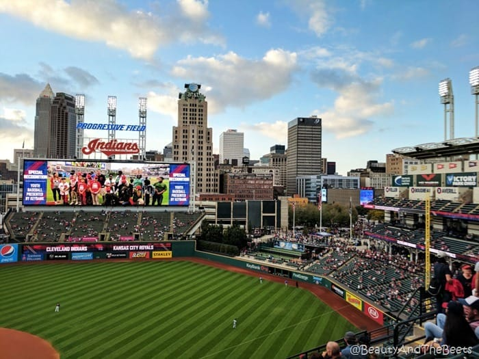 Cleveland Skyline Progressive Field Beauty and the Beets