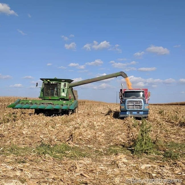 #FarmFoodTour Kansas Beauty and the Beets Combine Harvester
