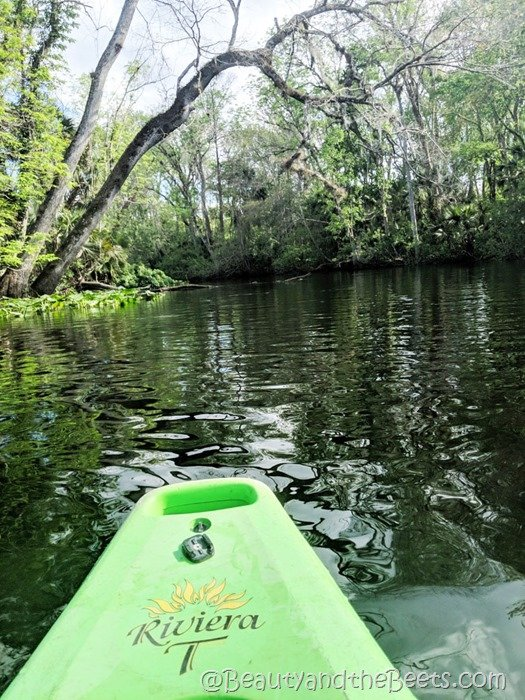 Wekiva Island green kayak Beauty and the Beets