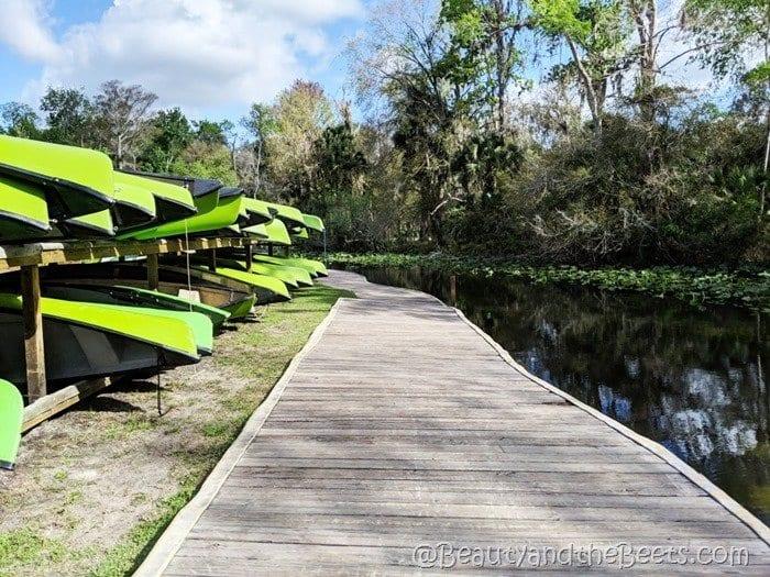 canoe boardwalk Wekiva Island Beauty and the Beets