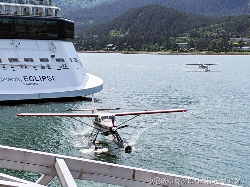 Float plane Juneau Alaska Beauty and the Beets
