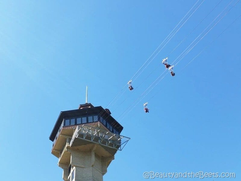 Zipline Inspiration Tower Branson MO Beauty and the Beets