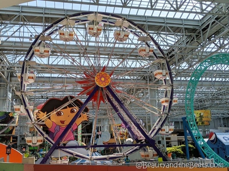 Mall of America Ferris Wheel Beauty and the Beets