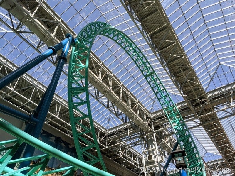 Mall of America roller coasters Beaut yand the Beets