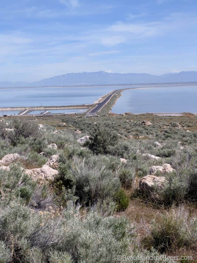 Antelope Island State Park causeway Beauty and the Beets