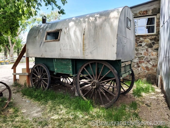 Covered Wagon Antelope Island Beauty and the Beets