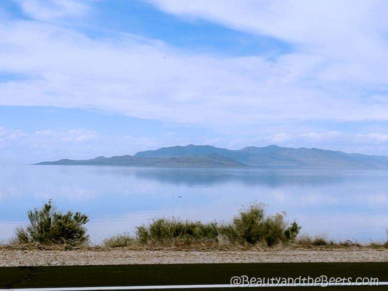 Great Salt Lake Utah Antelope Island Beauty and the Beets