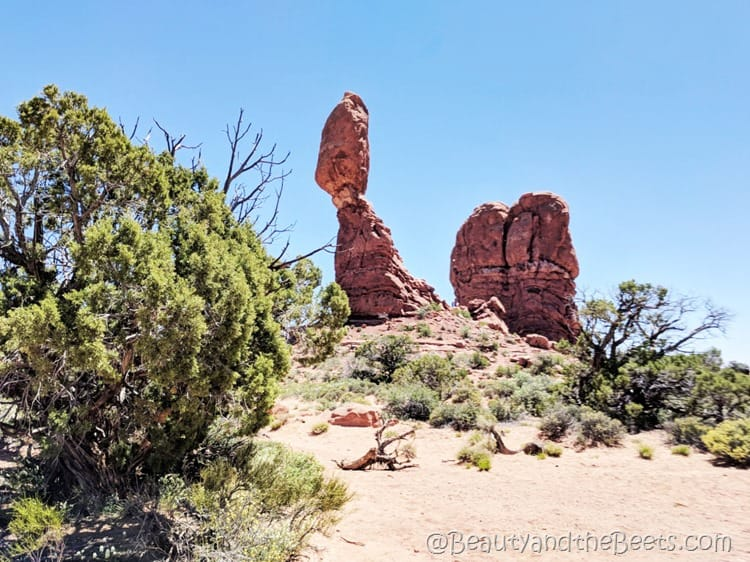 The Arches National Park Utah (3)