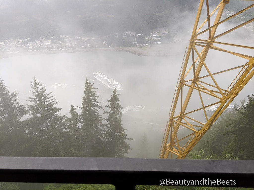 The Juneau tram, also known as the Mt. Roberts Tramway, is the only aerial tramway in Southeast Alaska.